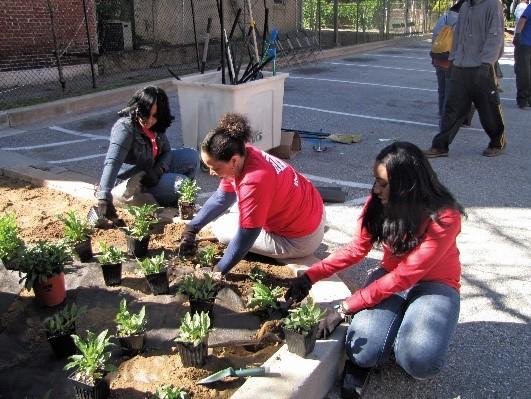 Volunteers spruce up the neighborhood to help celebrate the